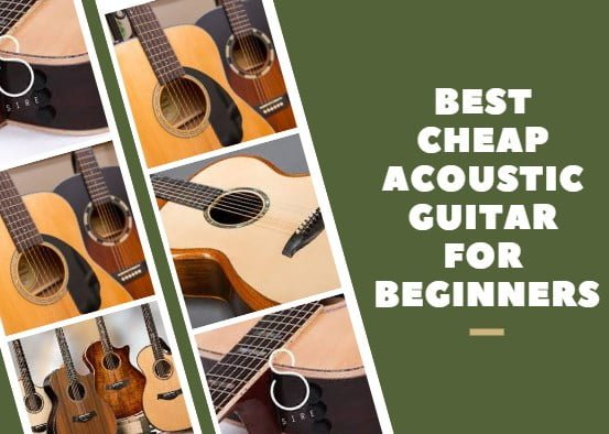 Best Cheap Acoustic Guitar for Beginners